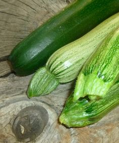 Zucchini Uses: The Tasty, Thirst-Quenching, & Surprising (With a Theme Song!)