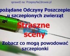 przepisynazdrowie.pl-NOP-niepozadane-odczyny0poszczepienne-zwierzeta-film-straszne-sceny