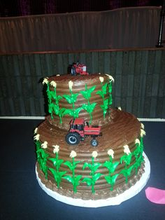 Cakes by Lori - Central Illinois