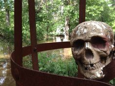 Skeleton in cage