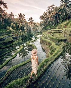 @travelinladies Instagram. Tegalalang, Bali, Indonesia.