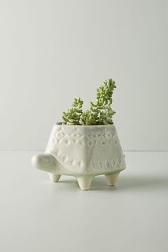 Terracotta Animal Planter by Anthropologie in Green, Decor Faux Succulents, Succulent Pots, Planting Succulents, Herb Planters, Ceramic Planters, Planter Pots, Wall Planters, Clay Planter, Planter Garden