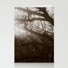 Hear the whispering through the trees ... Stationery Cards by Anja Hebrank - $12.00  #dresden #germany #deutschland #tree #trees #winter #old #vintage #streetphotography #canon #present #decoration #interior #bnw #blackwhite #travelling #travelphotography #design #individual #society6 #print #art #artprint #interior #decoration #design #photography #card #postcard #stationerycard
