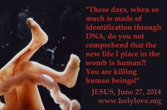 "JESUS: ""These days, when so much is made of identification through DNA, do you not comprehend that the new life I place in the womb is human?! You are killing human beings!"" #Prolife #Prochoice #Quote #Politics"
