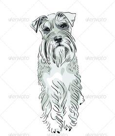 Vector Miniature Schnauzer dog serious salt-and-pe - Animals Characters