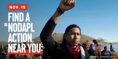 Be part of a national day of action against the Dakota Access Pipeline on Tuesday, November 15! Find an action at an Army Corps of Engineer office near you, or sign up to host an action in your city: