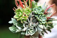 succulents bouquet - fabulous - Lindsay Farrer Photography