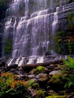 Russell Falls, Mount Field National Park, New Norfolk, Tasmania, Australia Tasmania, Beautiful World, Beautiful Places, Beautiful Waterfalls, Fall Pictures, Australia Travel, Natural World, Dream Vacations, Wonders Of The World