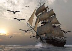 sailing, ocean, tall ship,