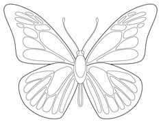 draw butterfly - Google Search