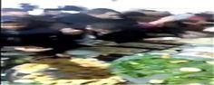الناظور : مدعون إلى افتتاح معرض جهوي يتهافتون على الماكلة بشراسة (فيديو) شاهد