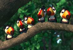 OMG, looks like baby toucans 😍😍😍!