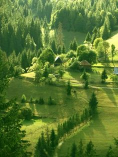 Apuseni Mountains,Romania - Western- side of Romanian Carpatians Beautiful Places To Visit, Beautiful World, Visit Romania, Sites Touristiques, Romania Travel, Beau Site, Amazing Nature, Nice View, Beautiful Landscapes