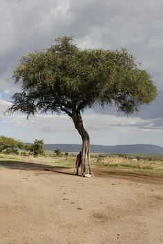 2012-09-21-kenia-masai-0059 by miguelandujar, via Flickr