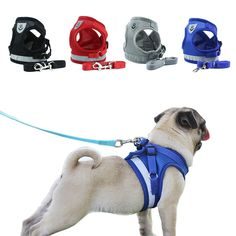 Cat Harness, Dog Vest, Medium Dogs, Dog Accessories, Dog Walking, Best Dogs, Pet Supplies, Dogs And Puppies, Doge