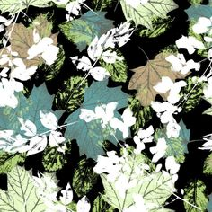 Botanical drawings and leaf skeletons. | Front Row Society, last few days of voting left if you would like to see this on a scarf go click 'I Love It' on the link at www.frontrowsociety.com Thank you! Leaf Prints, Flower Prints, Textures Patterns, Print Patterns, Leaf Skeleton, Textiles, Botanical Drawings, Pattern Ideas, Textile Design