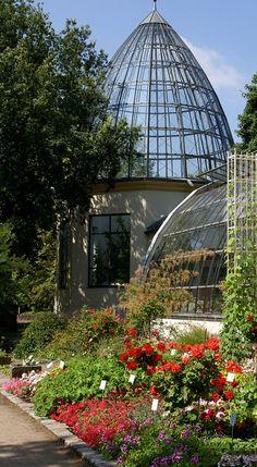 Palm garden - Frankfurt, Germany
