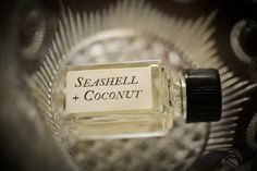 Seashell + Coconut natural perfume companion blend. Organic scent from real coconut and seashells!