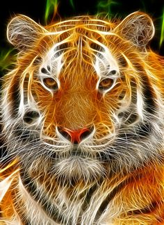 Tiger: Fractalius  by ~nerdboy69 on deviantART