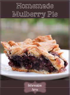 Homemade Mulberry Pie, could use blackberries or raspberries too