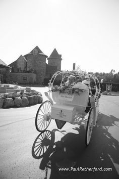 Abraham's horse carriage at Castle Farms in Charlevoix, Michigan  #PureMichigan #Wedding