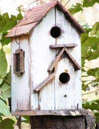 Make your own birdhouse