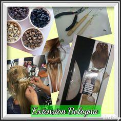 Extension Bologna tessitura
