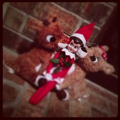 Gettin kisses from Rudolph and Clarice!  Cute!!