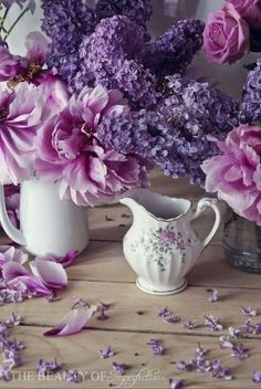 Beautiful lavender and lilac flowers in pitchers. Purple Love, All Things Purple, Purple Lilac, Purple Rain, Shades Of Purple, Fresh Flowers, Purple Flowers, Beautiful Flowers, Beautiful Things