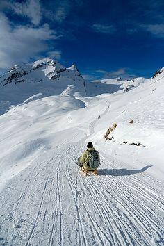 Sled Fun, Janfrau, Interlaken, Switzerland.  Photo: Hiya_wayne
