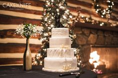 Pretty Cakes make for Pretty Photographs. This cake was designed by Aspen Charm Cakes in Denver, Colorado. Love their styles! http://www.aspencharm.com