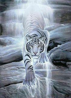 White tiger in white light Tiger Wallpaper, Animal Wallpaper, Big Cats Art, Cat Art, Beautiful Cats, Animals Beautiful, Image Tigre, Art Tigre, Tiger Pictures