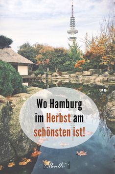 Das Wetter mag stürmisch sein und manchmal etwas nass. Doch für mich ist der Herbst in Hamburg die magischste Zeit des Jahres. Laub rieselt in den Farben der Saison, Kastanien regnen, Bäume glühen. Folgt den Leuchtsignalen! Hier kommen ein paar besondere Orte in Hamburg, die auch dann so richtig schön sind, wenn der Sommer sich verabschiedet….