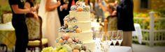Groups + Weddings