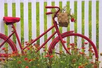 Bike with picket fence or painted striped board behind - low flower baskets in front