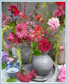 """""""Bloemerig Bloemen Blog"""" Happy Flowers, Love Flowers, Purple Flowers, Beautiful Flowers, Yellow Roses, Pink Roses, Cactus Flower, My Flower, Flower Vases"""