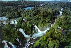 The Ishpingo-Tambococha-Tibutini Territory  area within Yasuni National Park (Ecuador)  encompasses largely intact rainforest considered to besome of the most biodiverse on earth. The area is also home to the Huaorani people and several indigenous peoples living in voluntaryisolation.