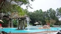 Pool at the Port Orleans - Riverside, Disney World