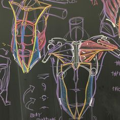 "Will Weston en Instagram: ""More anatomy stuf for Inventive Drawing at ArtCenter in Pasadena, CA. Most of the blackboard actually dealt with body mechanics (how the…"""