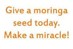 Conviértase en embajador del árbol Milagro  ¡Reparta semillas de Moringa! Dar una semilla de Moringa es un pequeño esfuerzo, un pequeño gesto, ¡pero con unos efectos enormes! Germine una semilla, y producirá un árbol de Moringa que crece rápidamente y le aportará nutrientes en los años venideros. Piense en todas las posibilidades que el árbol Moringa le ofrece. http://miracletrees.org/moringaSP.html