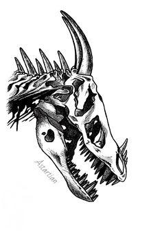 #astartian #art #skull #sketch #traditonal #Dragon