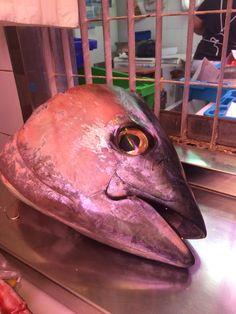 En el mercado, hay un pescado muy grande. Esta solamente la cabeza pero yo imagino que el cuerpo es muy grande tambien.