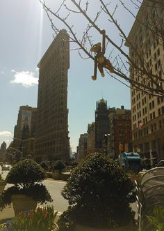 pientä mutta suurta: Flatiron, NYC