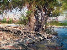 fallen cottonwood by Margi Lucena Pastel ~ 9 x 12