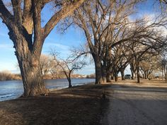 Ellis Lakeside Campground - 2019 All You Need to Know BEFORE You Go (with Photos) - TripAdvisor Kansas Missouri, Small Lake, Amazing Bathrooms, Campsite, Great Places, Brighton, Need To Know, Utah, Trip Advisor