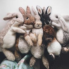 Mesmerizing Crochet an Amigurumi Rabbit Ideas. Lovely Crochet an Amigurumi Rabbit Ideas. Free Knitting, Baby Knitting, Crochet Baby, Knit Crochet, Knitting Toys, Crochet Gifts, Knitting Sweaters, Crochet Jacket, Newborn Crochet