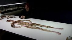 Deborah Kelly - Make More Monsters, contemporary Australian fine artist, discusses gender representations and process, vimeo clip 2d Art, Monsters, Gender, Bucket, Collage, Contemporary, Artist, How To Make, Collages