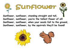 Themed Poems - seeds and plants Movement Preschool, Preschool Songs, Preschool Kindergarten, Sunflower Poem, Short Mothers Day Poems, Plant Song, Songs For Toddlers, Literacy And Numeracy, Kids Poems