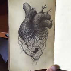 Lost and trapped in my own heart Anatomical Heart Drawing, Heart Drawings, Tattoo Drawings, Drawings Of Butterflies, Anatomy Art, Roots Drawing, Heart Art, Skin Art, Croquis
