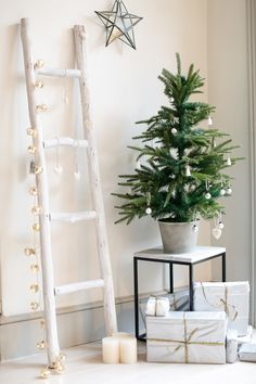 christmas trees from the white company